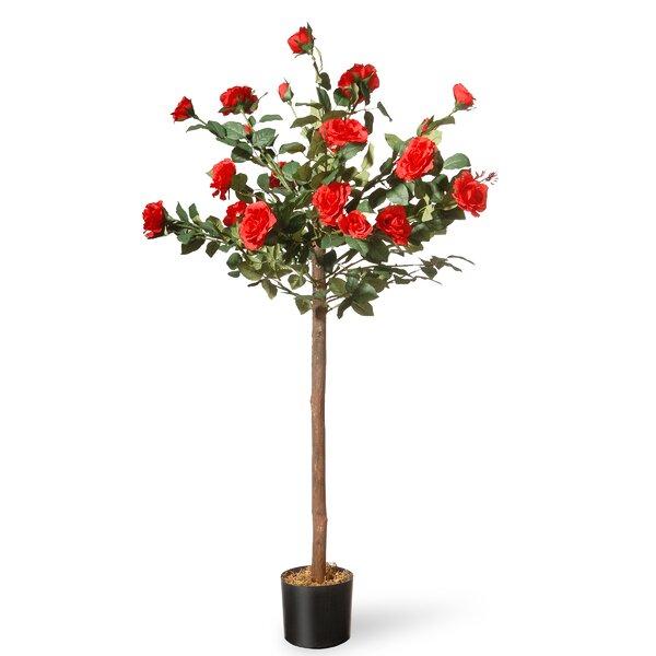 Rose Floor Flowering Tree in Pot by August Grove