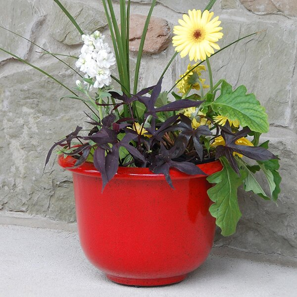 Glazetone Steel Pot Planter by Novelty