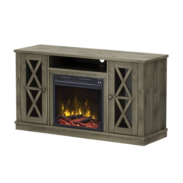 Emelia 48 TV Stand with Optional Fireplace by Breakwater Bay