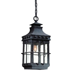 Reviews Theodore 1-Light Outdoor Hanging Lantern By Darby Home Co