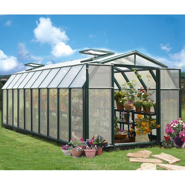Hobby Gardener 2 Twin Wall 8 Ft. W x 20 Ft. D Greenhouse by Rion Greenhouses