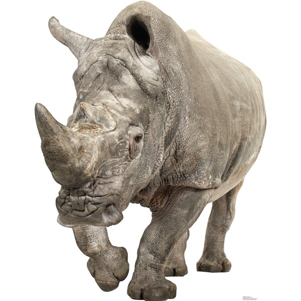 White Rhinoceros Cardboard Stand-Up by Advanced Graphics