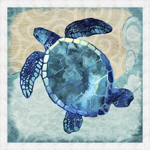 'Coastal Sea Turtle' Framed Graphic Art by Ashton Wall Décor LLC