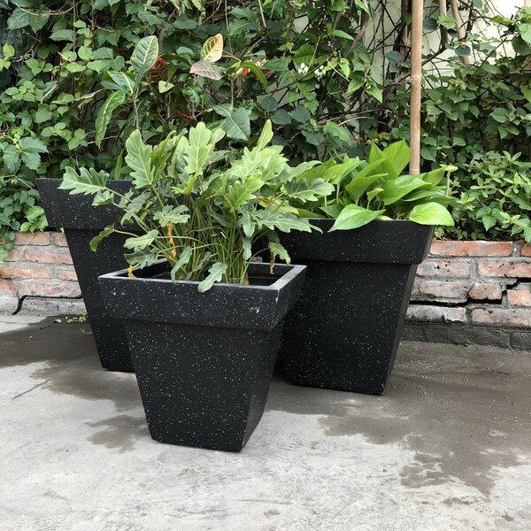 Florentine Square Stackable 3-Piece Concrete Pot Planter Set by Darby Home Co