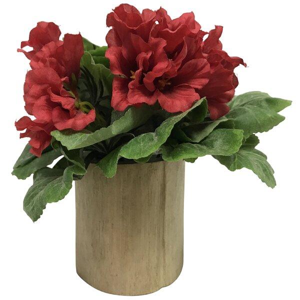 Geranium Floral Arrangements by Wrought Studio