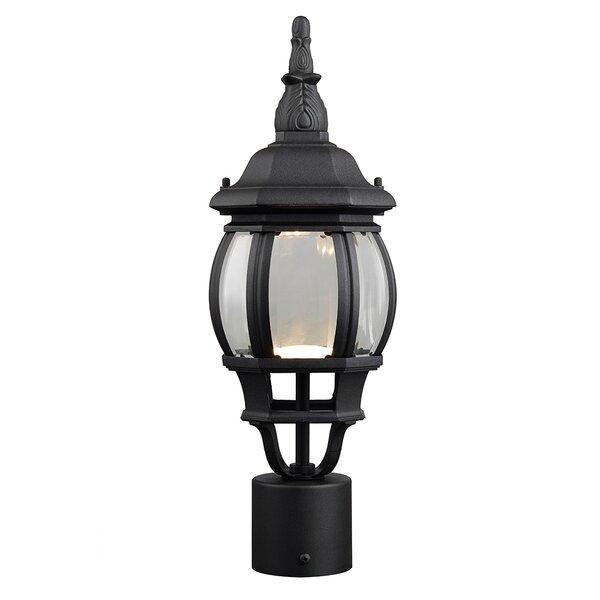 Diederich 1-Light LED Lantern Head by Alcott Hill