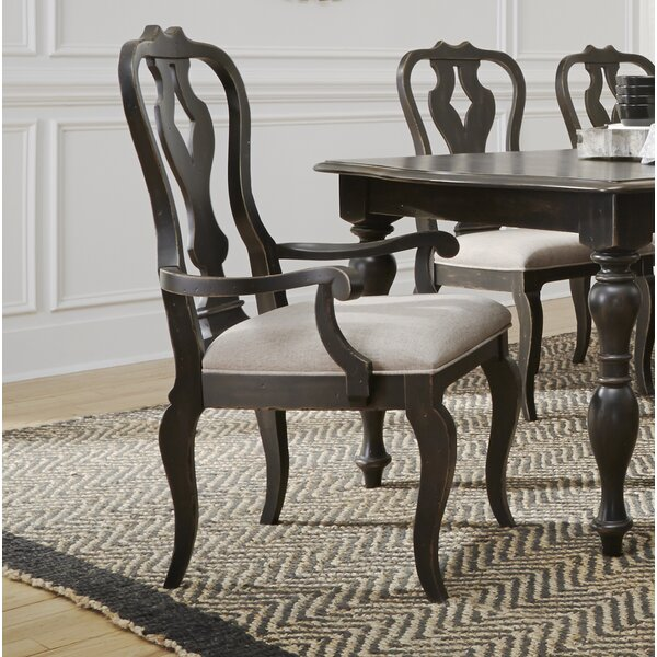 Darya Dining Arm Chair (Set of 2) by Darby Home Co