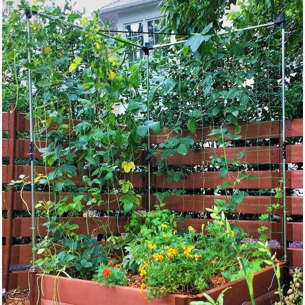 2 Piece Stack & Extend Steel Lattice Panel Trellis Set by Frame It All