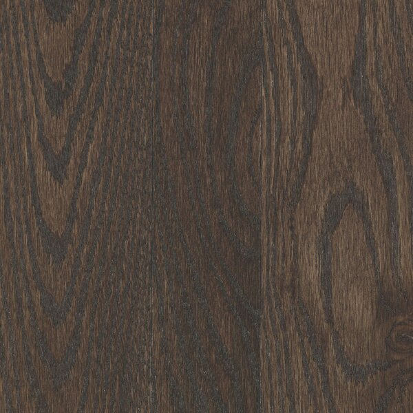 Charmaine 3-1/4 Solid Oak Hardwood Flooring in Matte Glossy Dark Truffle by Mohawk Flooring