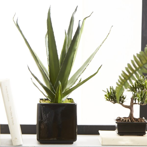 Artificial Aloe Succulent Desktop Plant in Planter