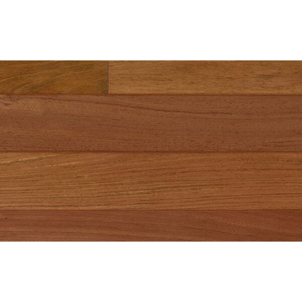 6-1/4 Engineered Brazilian Cherry Hardwood Flooring in Red by IndusParquet