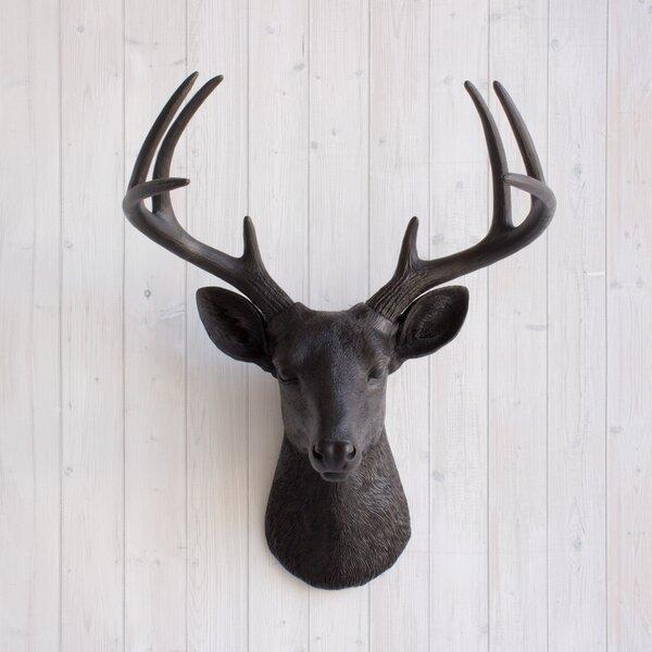Virginia Faux Taxidermy Deer Head Wall Décor by Wall Charmers