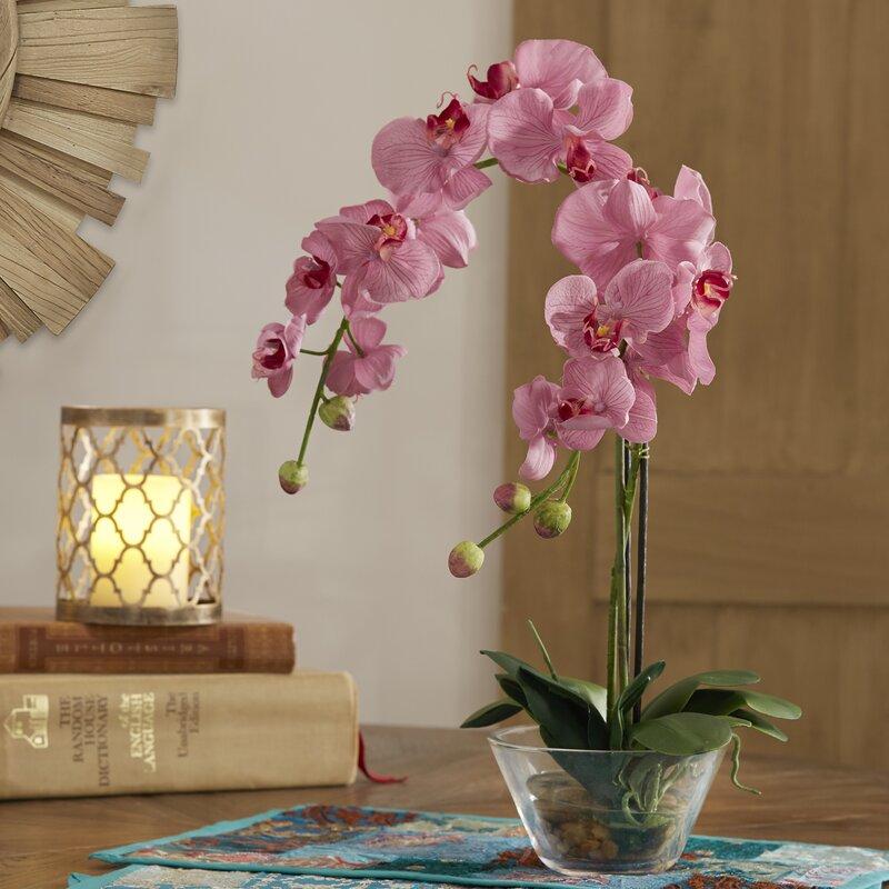 floral home decor orchid floral design wayfair.htm world menagerie orchids floral arrangement in vase   reviews wayfair  world menagerie orchids floral