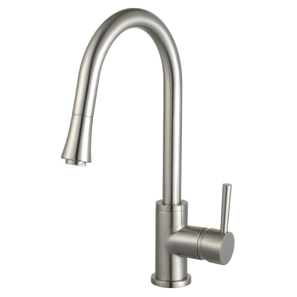 Mira Pull Down Single Handle Kitchen Faucet by Eisen Home