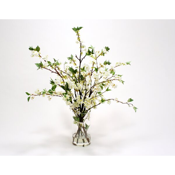 Waterlook White Cherry Blossoms in Glass Cylinder by Distinctive Designs