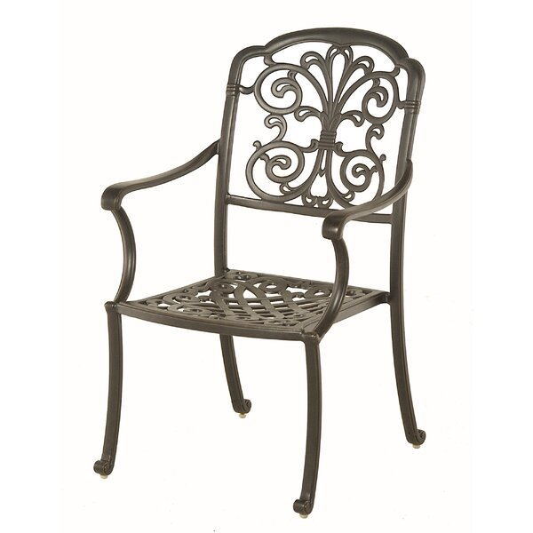 Merlyn Patio Dining Chair with Cushion (Set of 2) by Fleur De Lis Living