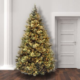 Lighted outdoor tree wayfair green pine trees artificial christmas tree with clearwhite lights aloadofball Image collections