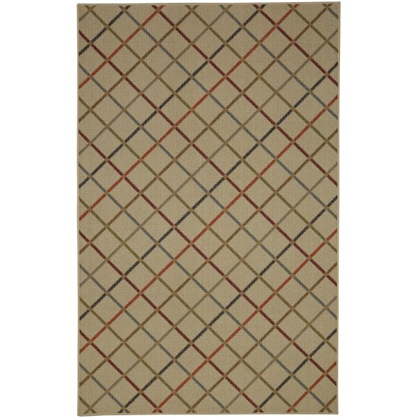 Locri Light Multi Area Rug by Brayden Studio