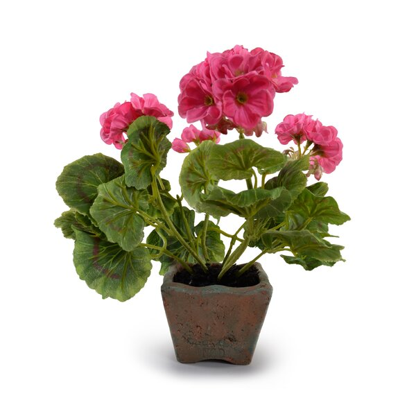 Faux Geranium by New Growth Designs