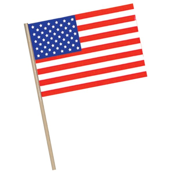 Patriotic American Traditional Flag by The Beistle Company