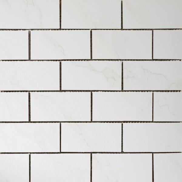 Paladino 2 x 4/12 x 12 Porcelain Mosaic Tile in Albanella Matte by Emser Tile