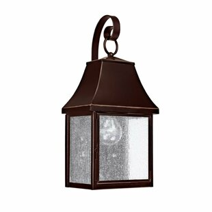 Read Reviews Collins Hill 1-Light Outdoor Wall Lantern By Capital Lighting