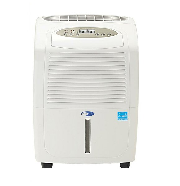 30 Pint Portable Dehumidifier with Casters by Whyn