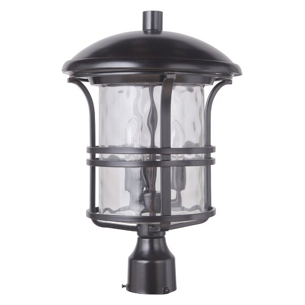 Concetta 3-Light 18.25 Lantern Head by Darby Home Co