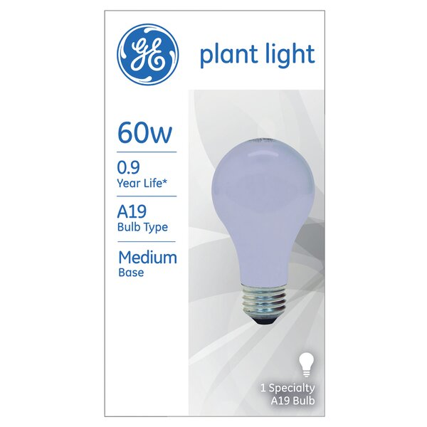 60W Blue 120-Volt Light Bulb by GE