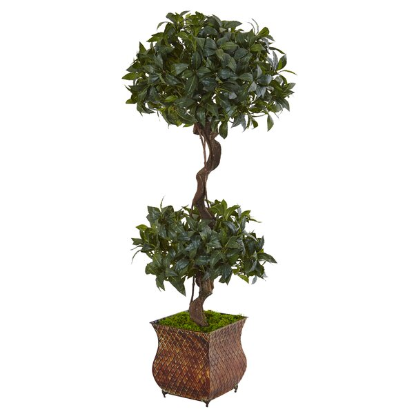 Artificial Sweet Bay Double Floor Foliage Topiary in Square Planter by Darby Home Co