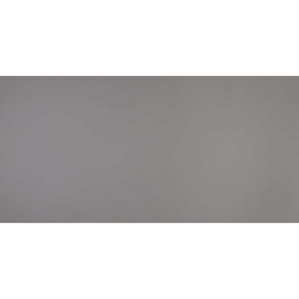 Aledo 24 x 48 Porcelain Field Tile in Trend Grey by Itona Tile