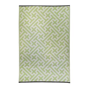 Premier Home Hand-Woven Green/White Indoor/Outdoor Area Rug By Fox Hill Trading