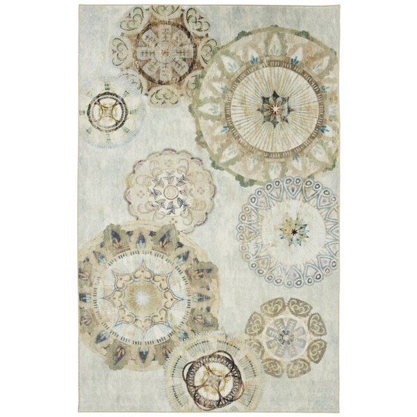 Hedin Painted Medallions Gray Area Rug by Bloomsbury Market