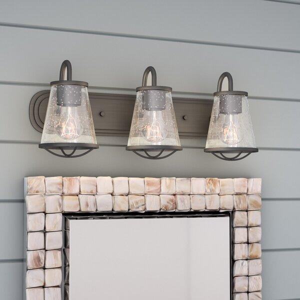 Regan 3-Light Vanity Light by Beachcrest Home
