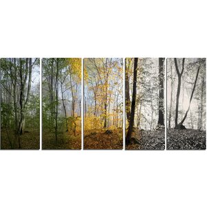 Forest in Early Morning 5 Piece Wall Art on Wrapped Canvas Set by Design Art
