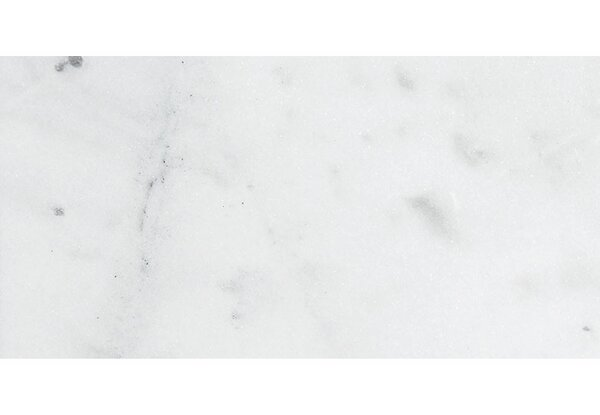Verona Marble 12 x 24 Natural Stone Field Tile in Bianco Honed by Parvatile