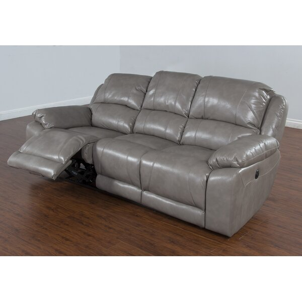 Floraville Dual Reclining Sofa By Red Barrel Studio