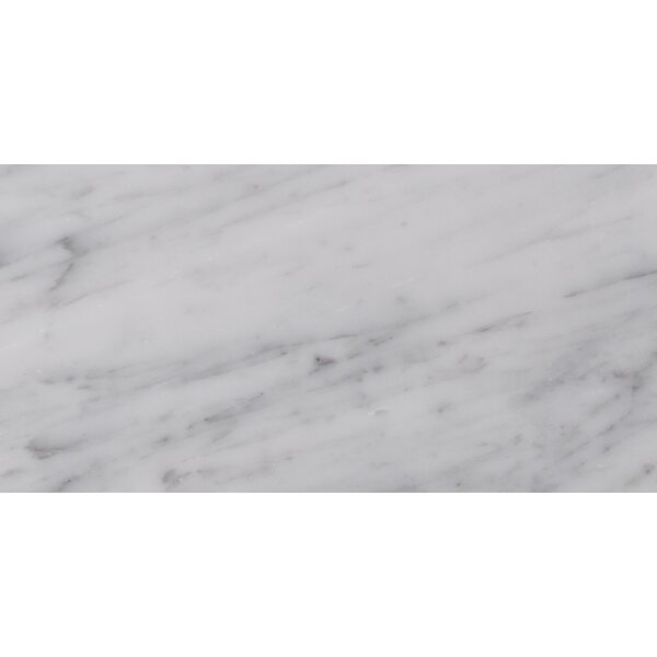 Carrara 6 x 12 Natural Stone Field Tile in White/Gray by MSI