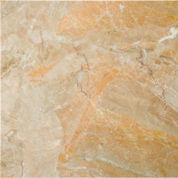 Marble 12 x 12 Field Tile in Breccia Oniciata by Emser Tile