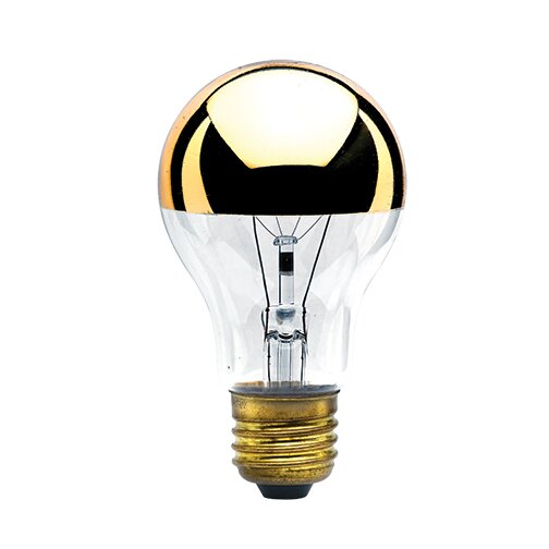 40W Amber E26/Medium (Standard) Incandescent Light Bulb (Set of 7) by Bulbrite Industries