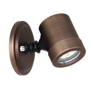 Decker 1-Light Outdoor Spotlight By Ivy Bronx Outdoor Lighting
