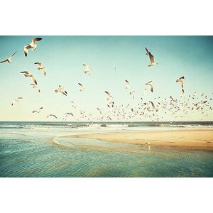 Freedom by Carolyn Cochrane Photographic Print on Canvas by Beachcrest Home
