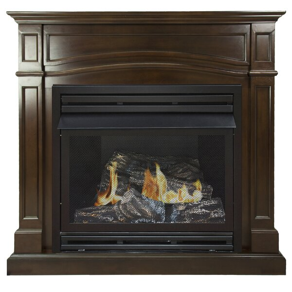 Shayne Natural Gas Fireplace by Darby Home Co