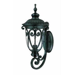 Coupon Appalachian 1-Light Outdoor Sconce By Astoria Grand