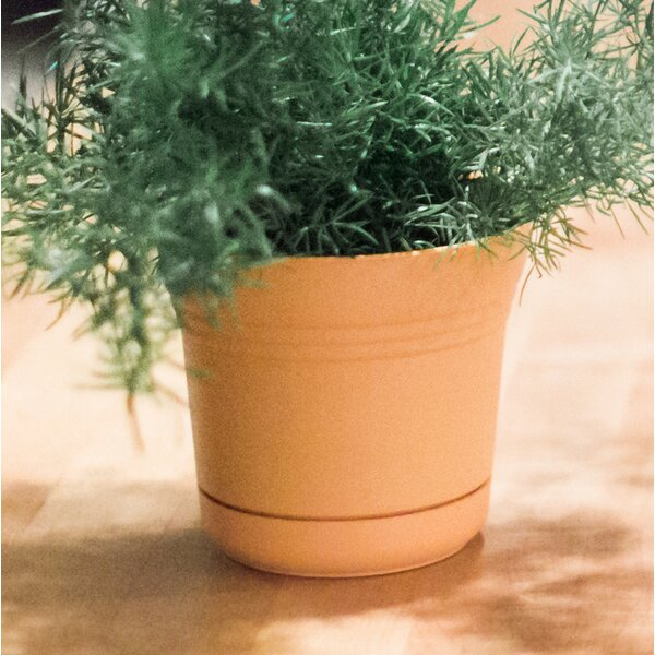 Saturn Plastic Pot Planter by Bloem