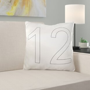 12 Throw Pillow Cover