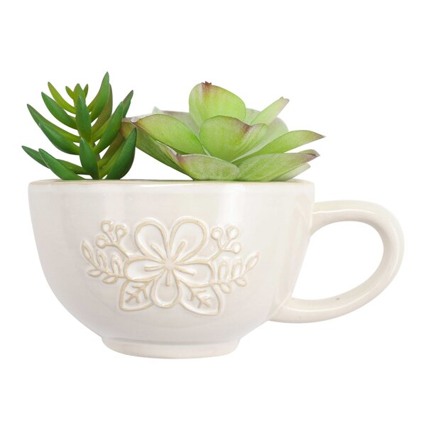 Quist Tea Cup Hanging Ceramic Wall Planter by Hallmark Home & Gifts