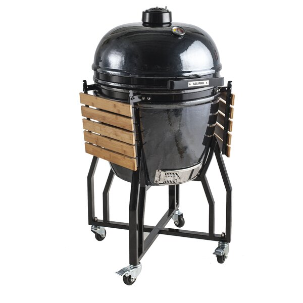 19 Elite Series Backyard Cooker Kamado Charcoal Grill by All-Pro
