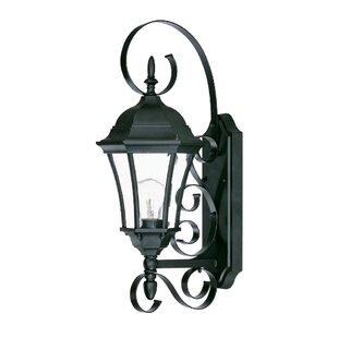Inexpensive Prangins 1-Light Glass Shade Outdoor Wall Lantern By Astoria Grand