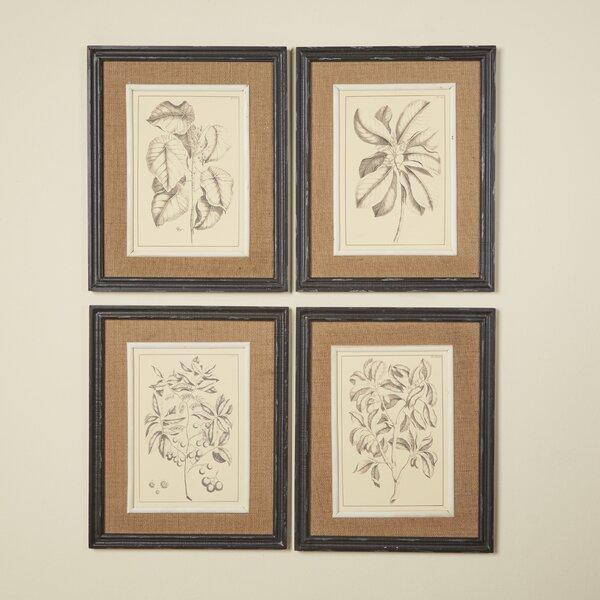 Botanic Framed Set on Fabric (Set of 4) by Birch Lane™